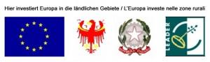 logo-leader-2013